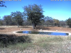 view from Sophienhof Lodge Waterhole on 2018-06-08