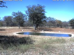 view from Sophienhof Lodge Waterhole on 2018-06-11