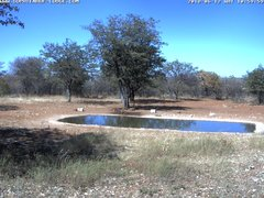 view from Sophienhof Lodge Waterhole on 2018-06-12