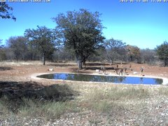 view from Sophienhof Lodge Waterhole on 2018-06-14