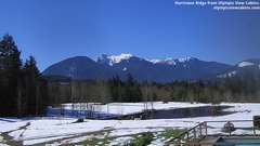 view from Olympic View Cabins Hurricane Ridge Cam on 2019-03-17