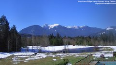 view from Olympic View Cabins Hurricane Ridge Cam on 2019-03-18