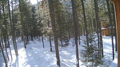 view from Cabin on 2019-01-28
