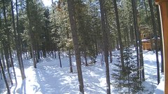 view from Cabin on 2019-02-05