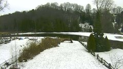 view from YardCam on 2018-12-31