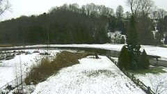 view from YardCam on 2019-01-07