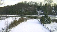 view from YardCam on 2019-01-09
