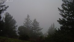 view from Kings Mountain on 2019-01-20