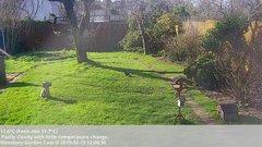 view from Wembury, Devon. Garden Cam on 2019-02-15