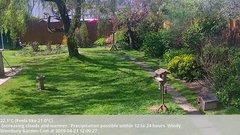 view from Wembury, Devon. Garden Cam on 2019-04-21