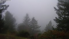 view from Kings Mountain on 2019-12-29