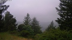 view from Kings Mountain on 2020-05-14