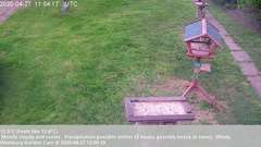 view from Wembury, Devon. Garden Cam on 2020-04-27