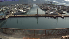 view from Seward Harbor on 2020-07-29