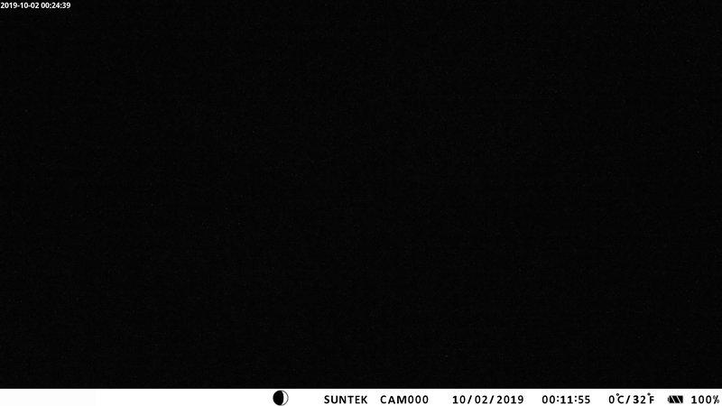 time-lapse frame, 1 Lesjaskog - Norway webcam