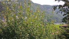 view from Webcam in Bad Schandau Sächsische Schweiz on 2021-07-25
